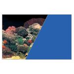 ZOLUX Poster d'aquarium fond Corail et Bleu. Longueur 40 cm x 30 cm de hauteur