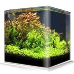 Cuve nue AMTRA NanoTank 90 L dimensions 45 x 45 x 45 cm en verre 6 mm
