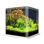 Cuve nue AMTRA NanoTank 20 dimensions 25 x 25 x 30 cm 18L en verre 4 mm
