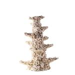 ARKA Column Slim 20 cm 1 Kg roche céramique haute porosité pour aquarium d'eau de mer