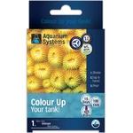 aquarium-systems-colour-up-marine-programme-unidoses-special-coraux-sur-15-jours-min