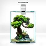 aquael-shrimpset-day-night-10-blanc-nano-aquarium-10l-tout-equipe-20-x-20-x-25-cm