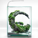 aquael-shrimpset-day-night-30-blanc-nano-aquarium-30l-tout-equipe-29-x-29-x-35-cm