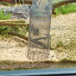 jbl-proclean-aqua-ex-20-45-cloche-de-nettoyage-pour-aquarium-de-20-a-45-cm-de-haut-5-min