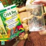 crickbox_2