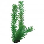 HOBBY Egeria 34cm plante artificielle pour aquarium
