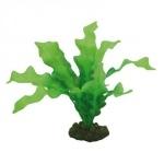 HOBBY Echinodorus 20cm plante artificielle pour aquarium