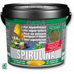 JBL Spirulina 5,5L flocons spéciaux pour mangeurs d'algues en eau douce et de mer