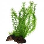 HOBBY Flora Root 3 L, plante artificielle sur support céramique pour la décoration de votre aquarium