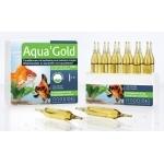PRODIBIO Aqua'Gold 12 ampoules conditionneur d'eau avec bactéries vivantes pour aquarium avec poissons rouges