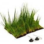 Tapis planté Epaqmat Eleocharis acicularis Dimension du tapis 16,5cm x 13cm