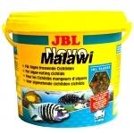 JBL NovoMalawi 5,5 L pour cichlidés rongeurs d'algues des lacs Malawi / Tanganyika