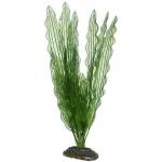 HOBBY Aponogeton 39 cm plante artificielle pour aquarium