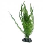 HOBBY Aponogeton 25 cm plante artificielle pour aquarium