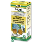 JBL Nedol Plus 250 médicament contre les Capillaridés, les Oxyuridés, les Camallanidés et autres nématodes