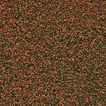 cichlid-gran-100