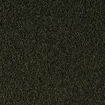 super-spirulina-forte-mini-granulat-100