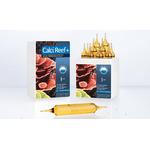 PRODIBIO CalciReef + 10 ampoules x 10ml maintient les niveaux de Calcium et Magnesium en récifal. Traite jusqu'à 1200 L