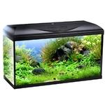 WAVE Riviera Basic 80 aquarium 95L tout équipé de 80cm avec ou sans meuble
