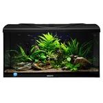 AQUAVIE StartUp 80 Noir aquarium de 112L tout équipé, 80 x 35 x 40 cm. Finition Haute gamme !