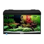 AQUAVIE StartUp 60 Noir aquarium de 54L tout équipé, 60 x 30 x 30 cm. Finition Haute gamme !