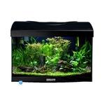AQUAVIE StartUp 40B Noir aquarium 25L avec vitre avant bombé, tout équipé, 40 x 25 x 25 cm. Finition Haute gamme !