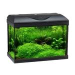 WAVE Riviera 40 LED ColdWater aquarium 22L tout équipé de 42 cm