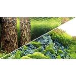 Poster de fond prédécoupé Scaper's Hill / Scaper's Forest 100 x 50 cm pour aquarium. Imprimé sur deux faces