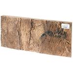 HOBBY Lot de 2 parois arrière en liège Laos 60 x 30 x 1,5 cm pour terrariums secs