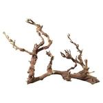 HOBBY Racine de vigne naturelle environ 50 à 70 cm pour la décoration des terrariums
