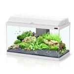 aquarium-aquadream-60-aquatlantis-blanc
