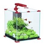 ZOLUX Aqua Nanolife Cube 50 Rouge nano-aquarium 51 L tout équipé 37 x 37 x 40 de haut