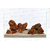 AQUADECO-Maple-Leaf-Rock-3-roche-aquarium-decoration-aquascaping