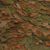 cichlid-color-100