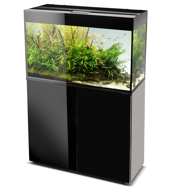 aquael glossy 80 noir laqu aquarium 80 cm volume 125 l et clairage leds tous les aquariums. Black Bedroom Furniture Sets. Home Design Ideas