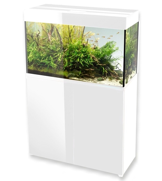 aquael glossy 80 blanc laqu aquarium 80 cm volume 125 l et clairage leds tous les aquariums. Black Bedroom Furniture Sets. Home Design Ideas