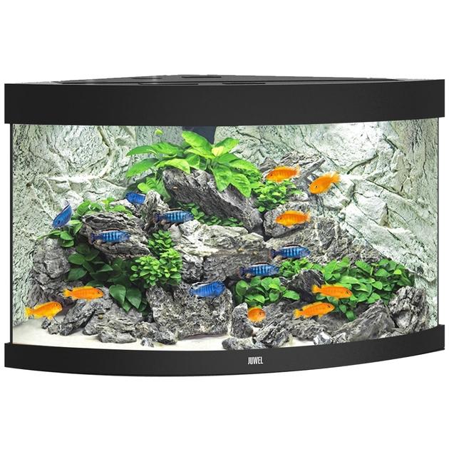 Aquarium juwel trigon 190 led dim 99 x 70 x 60 cm 190 for Aquarium angle