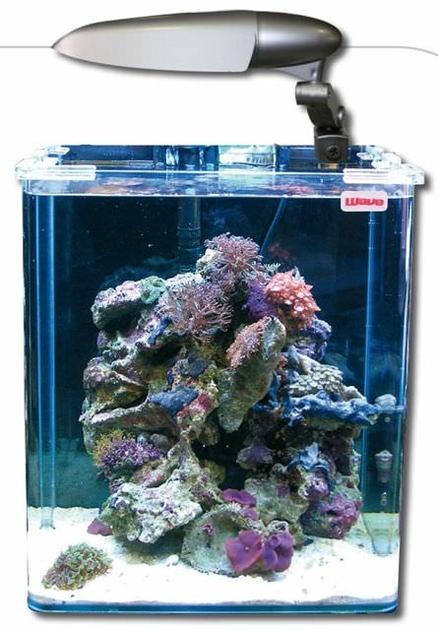 Nano aquarium wave box cube 30 marine de 28l tout quip for Aquariophilie en ligne