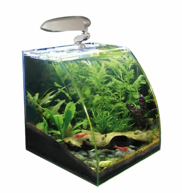 Nano aquarium wave box vision 30 avec vitre avant courb for Aquarium en ligne