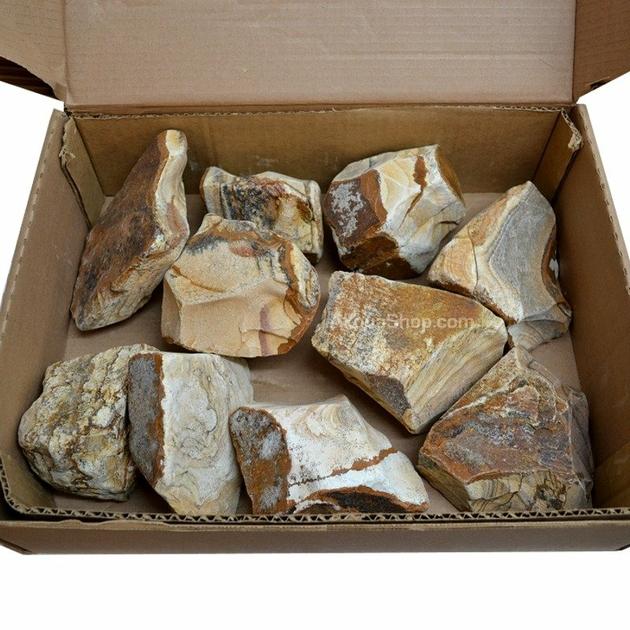 Caisse de 10 kg de pierres image 10 15cm pour la d coration de votre aquarium d 39 eau douce - Decoration pour aquarium d eau douce ...