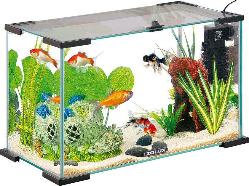 Nano aquarium zolux nanolife first 20 black volume 19l for Aquarium en ligne