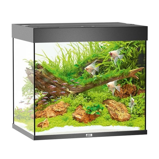 Aquarium juwel lido 200 led dim 71 x 51 x 65 cm 200 - Aquarium 200 litres avec meuble ...