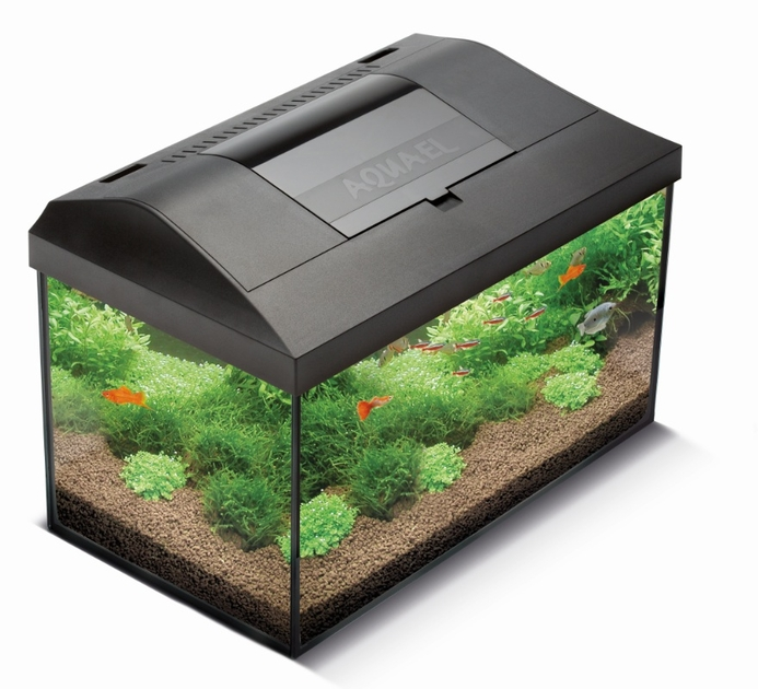 aquael leddy 60 aquarium quip 60 x 30 x 30 cm 54l avec. Black Bedroom Furniture Sets. Home Design Ideas