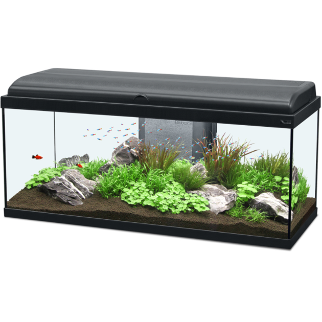 aquarium aquatlantis aquadream 100 tout quip 115 l coloris noir ou blanc avec ou sans meuble. Black Bedroom Furniture Sets. Home Design Ideas