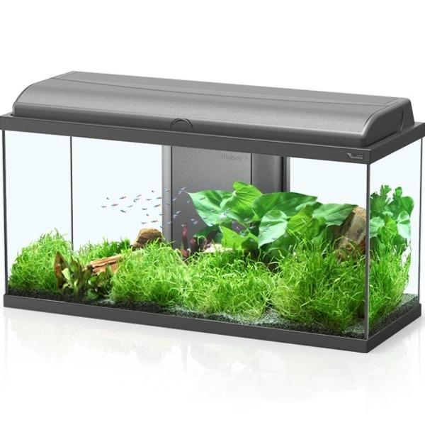 aquarium aquatlantis aquadream 80 tout quip 90 l coloris noir ou blanc avec ou sans meuble. Black Bedroom Furniture Sets. Home Design Ideas
