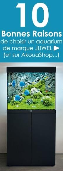achat-aquarium-Juwel-sur-akouashop
