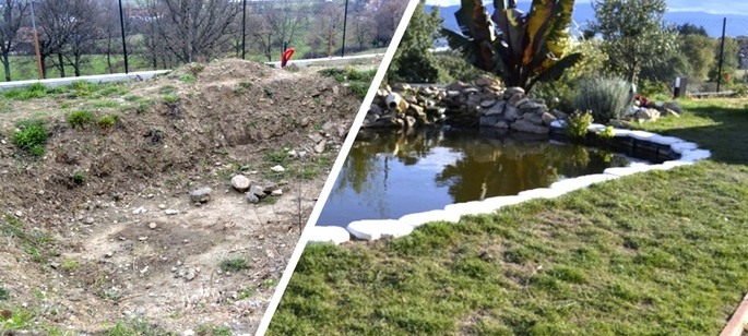 Blog aquariophilie nouveaut s for Construction bassin de jardin