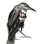 corbeau26-web