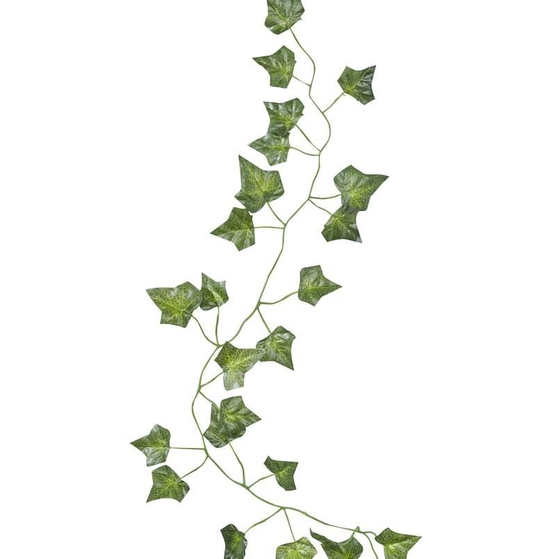 Guirlande végétale de lierre