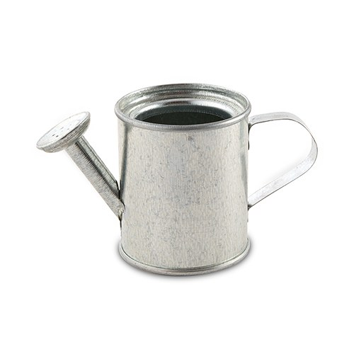 Petit arrosoir en métal argenté